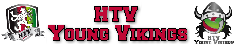 HTV Young Vikings